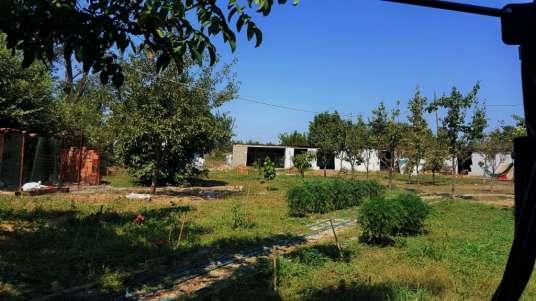 Meriç Yenicegörüce Köyü Satılık çiftlik Fiyatları Ve Ilanları Zingat