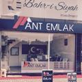 Enver Ant